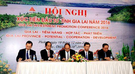 Gia Lai phai tro thanh tinh giau manh phia Bac Tay Nguyen - Anh 1