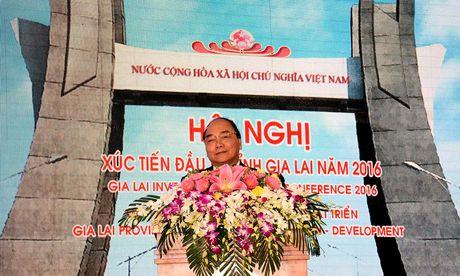 Gia Lai phai tro thanh tinh giau manh phia Bac Tay Nguyen - Anh 2
