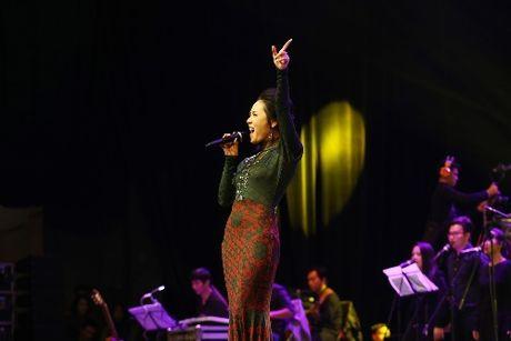 Diva Hong Nhung lam say long nguoi trong show cua Ha Anh Tuan - Anh 3