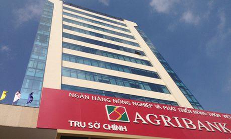 Cho vay nong nghiep cong nghe cao: Agribank dang dan dau - Anh 1