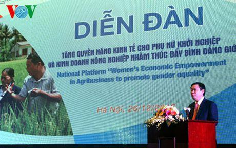 Phu nu se lam chu hon 1/3 doanh nghiep tren toan quoc - Anh 1