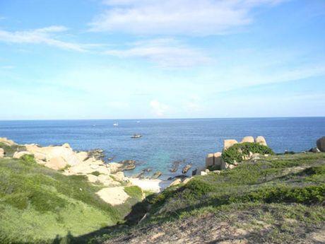 Nhiet dien than de doa nghiem trong khu bao ton bien Hon Cau - Anh 2