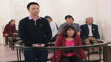 Mao danh tro ly Thu tuong Chinh phu lua chay du an - Anh 1