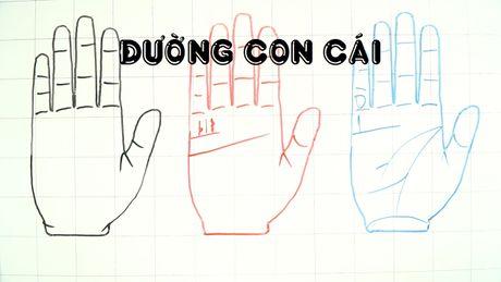 Tu xem so phan qua ban tay: La lung duong con cai - Anh 1