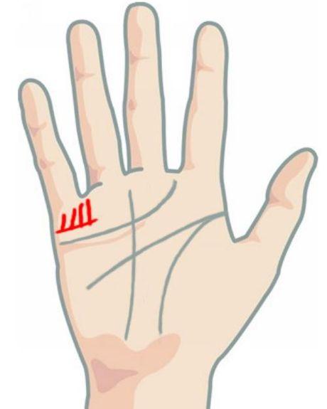 Tu xem so phan qua ban tay: La lung duong con cai - Anh 2