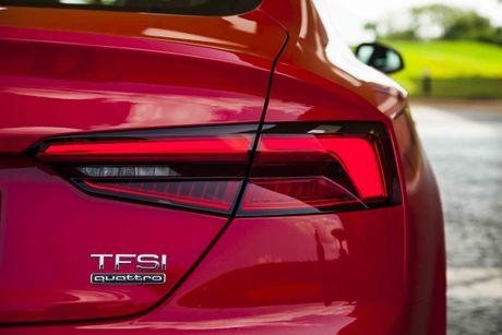 Audi A5 Sportback phien ban gioi han phuc vu APEC co gi dac biet? - Anh 4