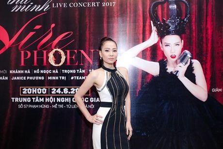 Thu Minh bo 6 ti lam show ky niem 25 nam ca hat - Anh 3