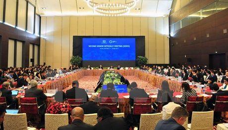 Khai mac hoi nghi lan thu hai quan chuc cao cap APEC - Anh 1