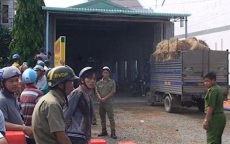Tai xe dam chet chu vua mua rom o Binh Thuan - Anh 1