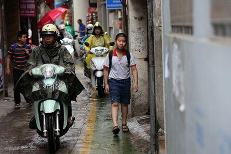 Ngo ngang voi lan duong doc nhat Viet Nam - Anh 4