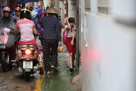 Doc dao 'tuyen duong BRT' trong ngo dau tien tai Ha Noi - Anh 9