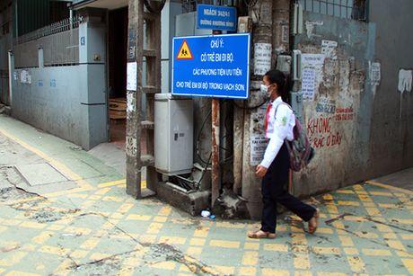 Doc dao 'duong BRT' danh rieng cho tre em di bo o Ha Noi - Anh 8