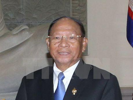 Chu tich Quoc hoi Campuchia se tham huu nghi chinh thuc Viet Nam - Anh 1