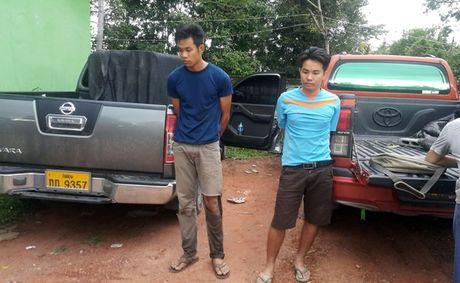 Ha Tinh: Pha chuyen an 1.000 banh can sa chat day o to - Anh 1