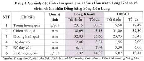 Cach phan biet de chon dung 'chuan' chom chom nhan Long Khanh - Anh 1