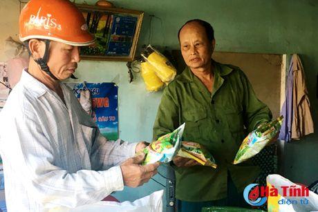 Lua xuan nhiem dao on co bong (bai 1): Lan theo mang luoi cung ung giong - Anh 2