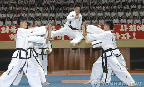 Doi Taekwondo Trieu Tien se toi Han Quoc - Anh 1