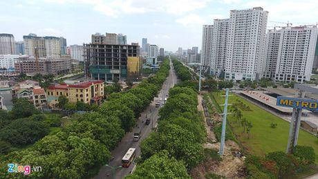 Chu tich Ha Noi: 'Khong the trong lai xa cu co thu tren cac tuyen pho' - Anh 2