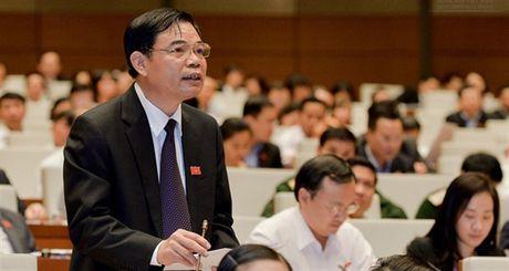 Quoc hoi thao luan Luat Bao ve va Phat trien rung - Anh 1