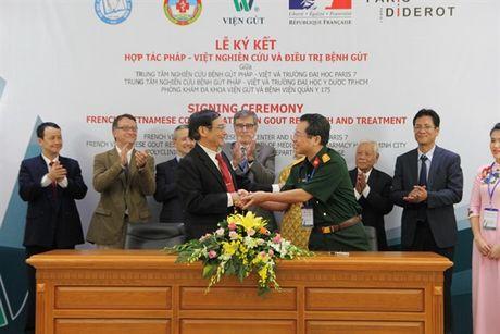 Hop tac Viet - Phap nghien cuu dieu tri benh gut - Anh 2