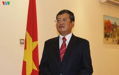 Moi hoat dong cua nguoi Viet o Qatar van dien ra tuong doi binh thuong - Anh 1