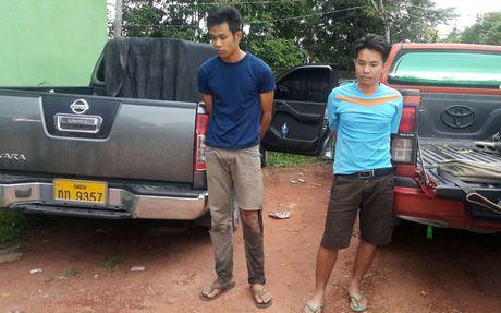 Can canh 1.000 banh can sa suyt lot vao Viet Nam - Anh 1