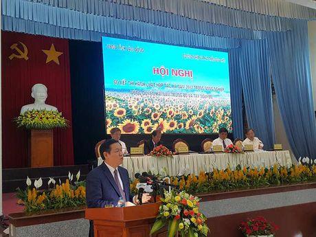 PTTg Vuong Dinh Hue khuyen: 'Dau tu cho kinh te tap the chi co lai' - Anh 1