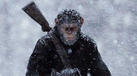 'Hanh tinh khi' thong linh phong ve va thang duong den Oscar - Anh 1