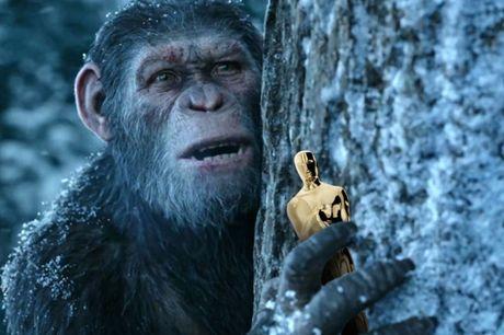 'Hanh tinh khi' thong linh phong ve va thang duong den Oscar - Anh 2