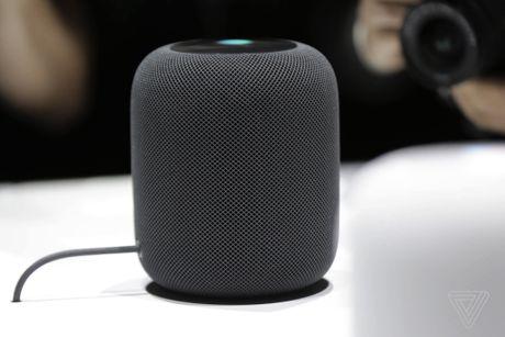 Siri de thua Google Assistant, Alexa va Cortana trong mot nam tro lai day - Anh 3