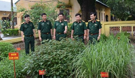 Tong cuc Hau can to chuc hoi thi 'Don vi quan y 5 tot' - Anh 1