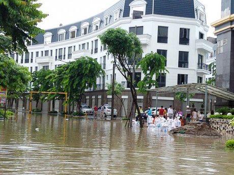 Hang loat do thi phia Tay Ha Noi 'khoc thet' vi ngap - Anh 6