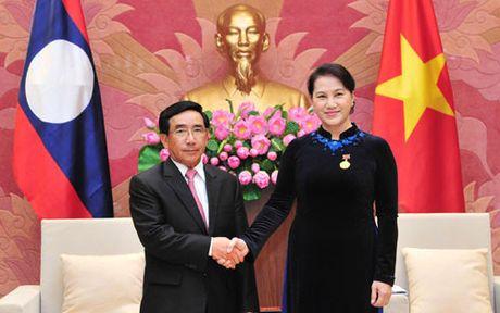 Chu tich Quoc hoi Viet Nam tiep Pho Chu tich nuoc CHDCND Lao - Anh 1