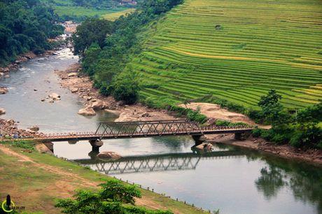 Lac loi trong thung lung lua chin trang le nhat Lao Cai - Anh 12