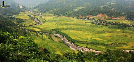 Lac loi trong thung lung lua chin trang le nhat Lao Cai - Anh 1
