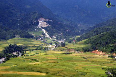Lac loi trong thung lung lua chin trang le nhat Lao Cai - Anh 7