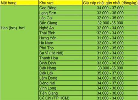Gia heo hoi hom nay (5/8) tai mot so tinh mien Nam giam nhe vi heo di bien gap kho - Anh 1