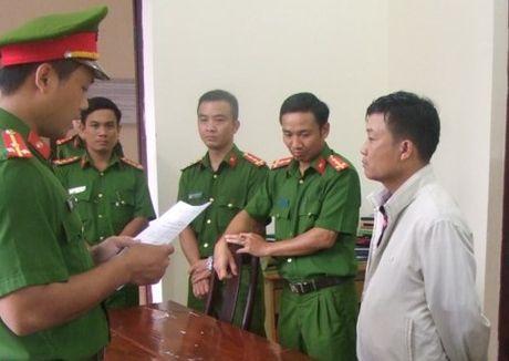 Dak Nong: Khoi to giam doc cong ty lam nghiep lam mat hon 75ha rung - Anh 1
