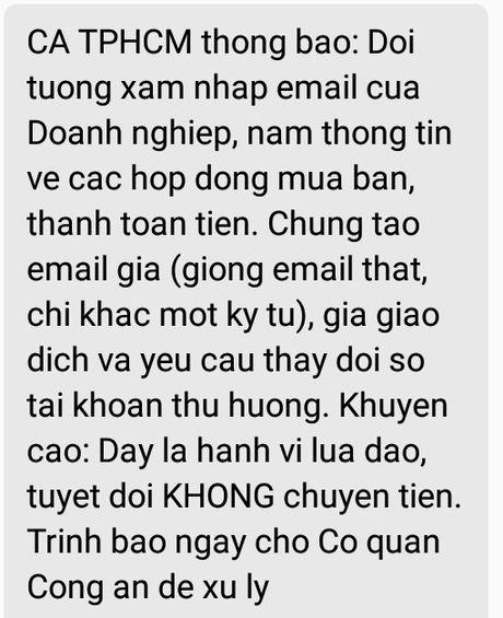 Bi danh cap email, doanh nghiep o Sai Gon mat hang ty dong - Anh 1