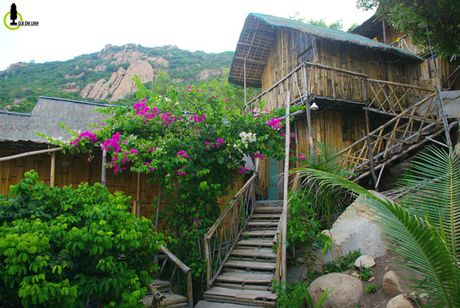Kham pha bai tam dep lung linh, an tom hum gia 'beo' bac nhat Viet Nam - Anh 9