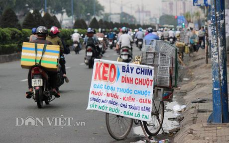 Can canh dat giap ranh san bay Tan Son Nhat can giai toa - Anh 8