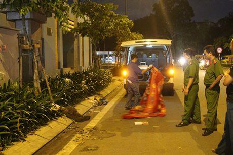 TP.HCM: Nguoi dan ong tu vong bat thuong tai cong vien Gia Dinh - Anh 1