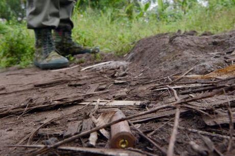 Congo: Bieu tinh chong chinh phu, hang chuc nguoi thiet mang - Anh 2