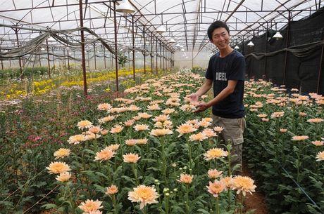 Chuyen ly thu ve chang trai nguoi Nhat trong hoa o Da Lat - Anh 1