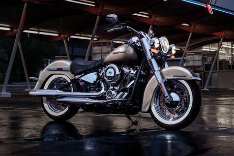 Harley-Davidson Softail 2018 gia tu 329 trieu co gi? - Anh 3