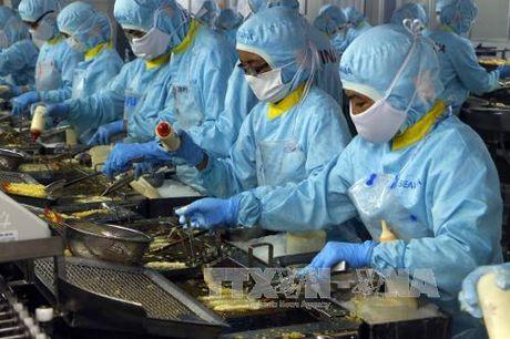 Chiên tôm tempura trong nhà máy Seavina. Ảnh: Thanh Liêm/TTXVN