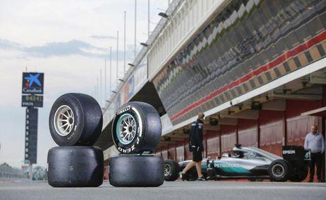 Dua xe F1: Lop xe va nhung 'ngu ong dac loi' - Anh 3