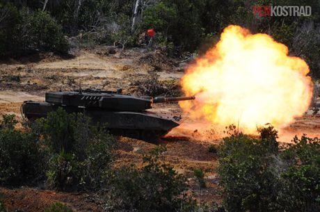 Can canh sieu tang Leopard 2RI cua lang gieng Indonesia - Anh 2