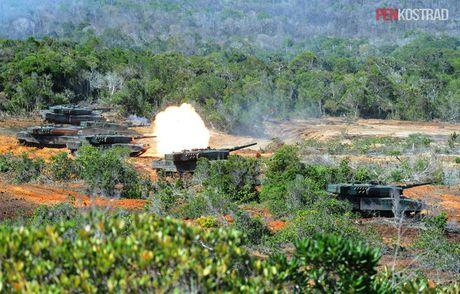 Can canh sieu tang Leopard 2RI cua lang gieng Indonesia - Anh 3