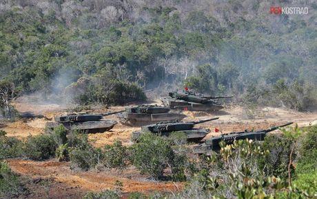 Can canh sieu tang Leopard 2RI cua lang gieng Indonesia - Anh 4